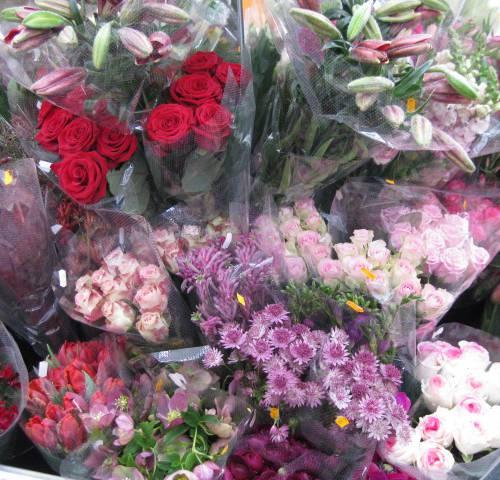 bloemen oude proeftuin voorjaar 2012 047