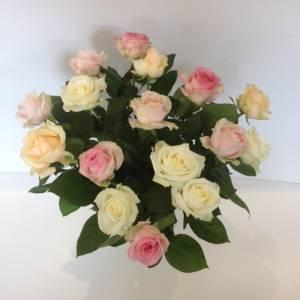 Avalanche-rozen-mix-pastel